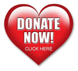 heart-donation-button